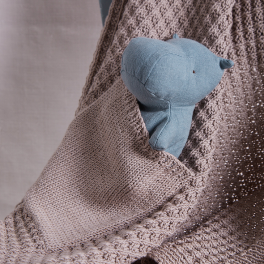 EK10 Toy Pocket Blanket