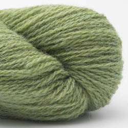 BC Garn Bio Shetland GOTS spring green