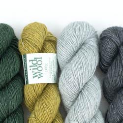 Erika Knight Wild Wool 100g