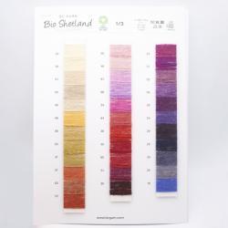 BC Garn Farvekort Bio Shetland with new colors